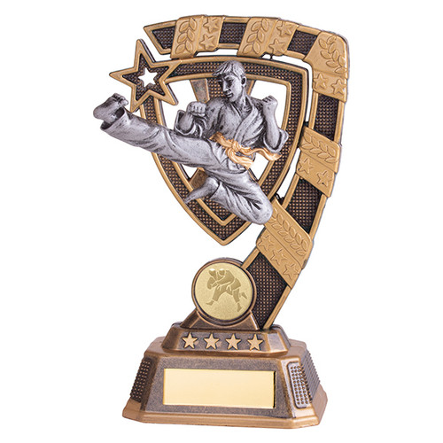 Euphoria Karate Award available in 4 super sizes with FREE Engraving