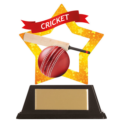 Cricket acrylic mini-star award at 1st Place 4 Trophies FREE engraving