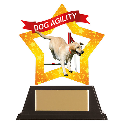 Dog Agility acrylic mini-star award at 1st Place 4 Trophies FREE engraving