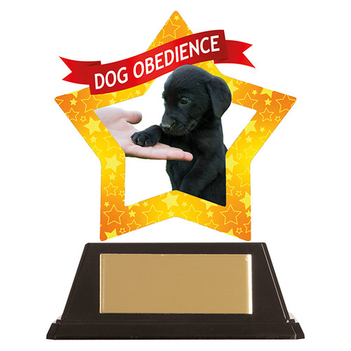 Dog Obedience acrylic mini-star award at 1st Place 4 Trophies FREE engraving
