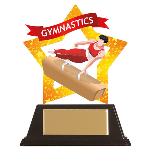 Male Gymnastics acrylic award 1st Place 4 Trophies FREE engraving