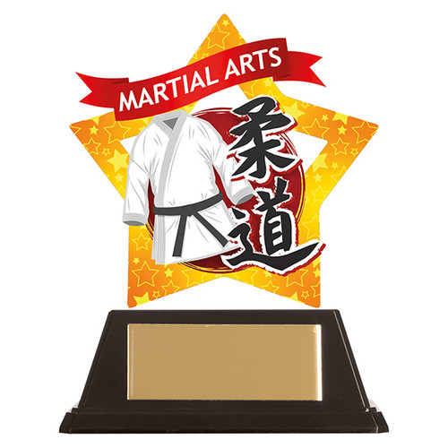 Judo acrylic award 1st Place 4 Trophies FREE engraving