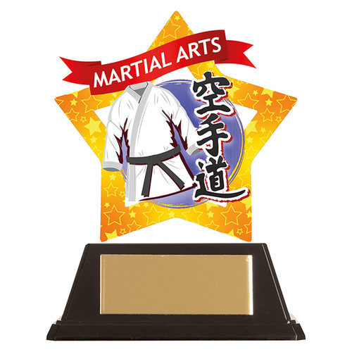 Karate acrylic award 1st Place 4 Trophies FREE engraving