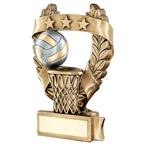 Netball award available in 3 sizes with FREE engraving