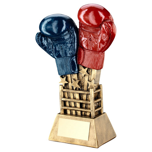 Boxing Award in 2 sizes with FREE engraving at 1stPlace4Trophies