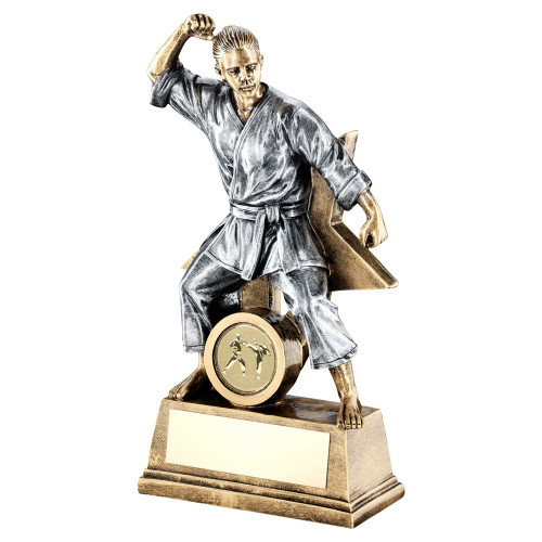 Martial Arts Award in 3 sizes with FREE engraving