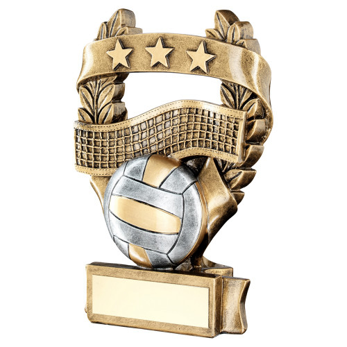 Volleyball trophy available in 3 sizes with FREE engraving