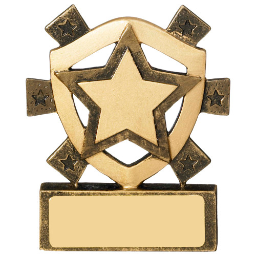 Star mini budget award includes FREE engraving