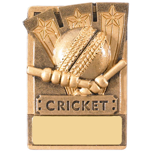 "3"" Cricket Magnetic Award with FREE engraving"