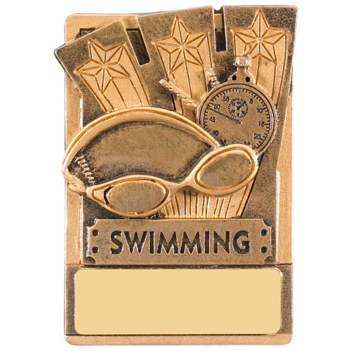 "3"" Swimming Magnetic Award with FREE engraving"