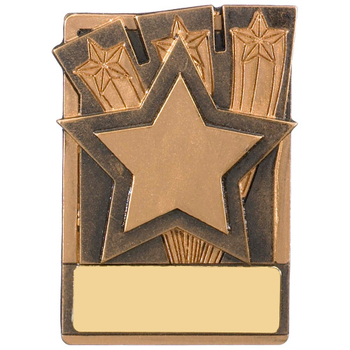 "3"" STAR Magnetic Award with FREE engraving"