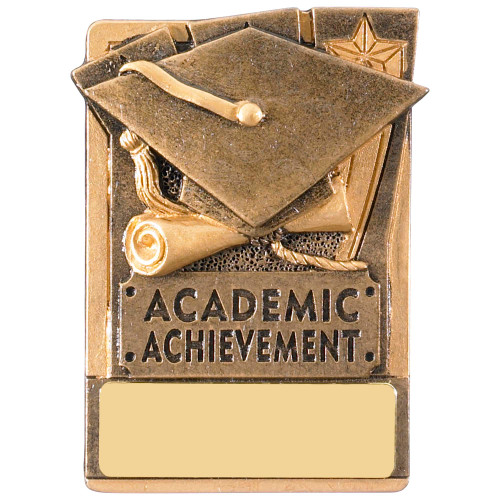 "3"" Academic Achievement Magnetic Award with FREE engraving"