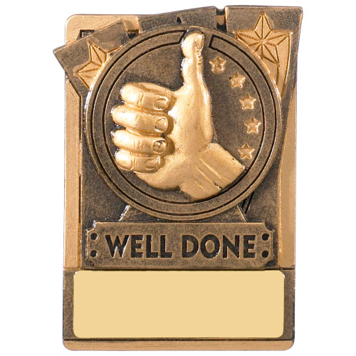 "3"" WELL DONE Magnetic Award with FREE engraving"