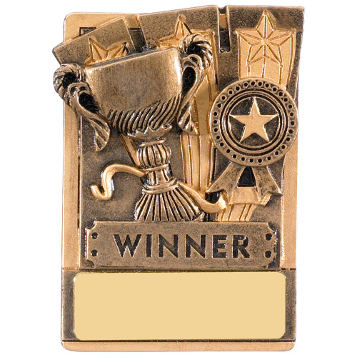 """3"""" WINNER Magnetic Award with FREE engraving"""