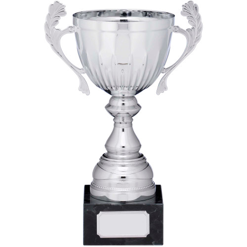 Silver presentation cup in 5 sizes with FREE engraving