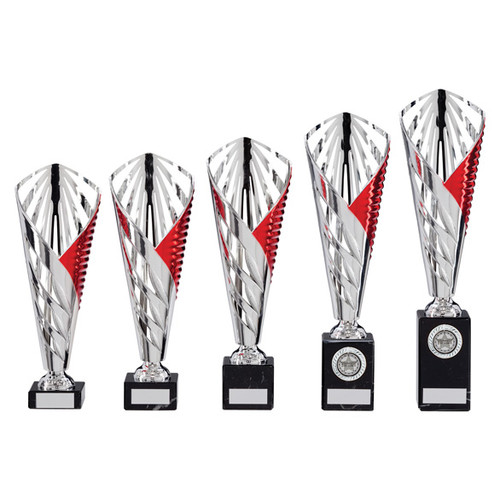 Vision Multisport silver and blue cup available in 5 sizes