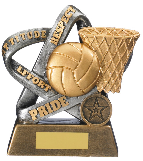 Infinity gold & silver netball respect trophy with FREE engraving