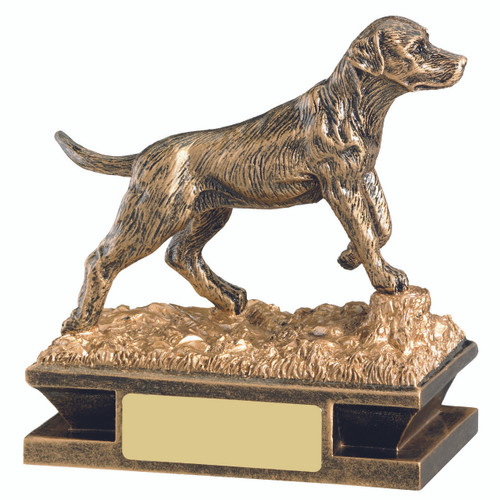 Stunning gold dog award. Gun dog. Dog Obedience, Agility, show. 1stPlace4Trophies with FREE engraving