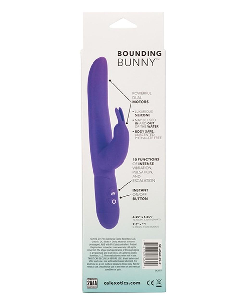 CalExotics Bounding Bunny