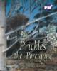 PM Plus Purple Prickles the Porcupine Lvl 19