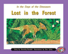 PM Library Orange Lost in the Forest Lvl 16