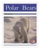 PM Library Silver Polar Bears Lvl 23