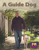 New PM Library Blue A Guide Dog Lvl 11-12