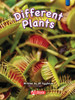 Key Links Literacy Blue Different Plants