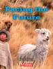 Key Links Literacy Purple Facing the Future