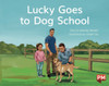 PM Library Yellow Level 7 Lucky Goes to Dog School 6-pack