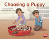 PM Library Yellow Level 7 Choosing a Puppy 6-pack
