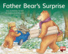 PM Library Green Level 13 Father Bear's Surprise 6-pack