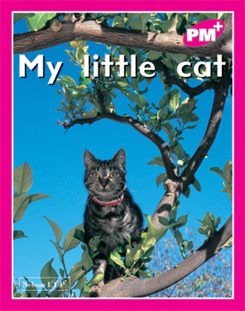 PM Plus Magenta My Little Cat Lvl 2