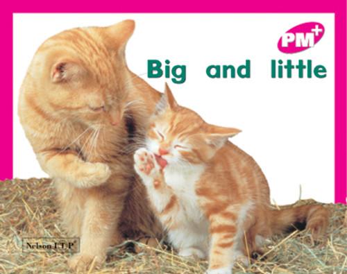 PM Plus Magenta Big and Little Lvl 2