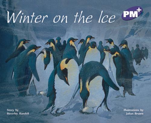 PM Plus Purple Winter on the Ice Lvl 20
