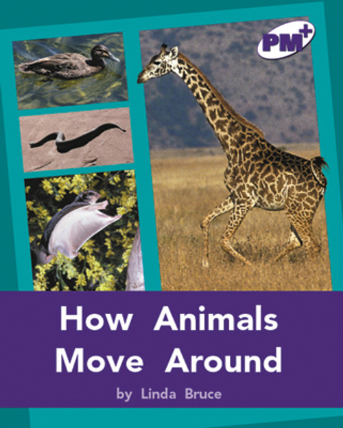 PM Plus Purple How Animals Move Around Lvl 20-21