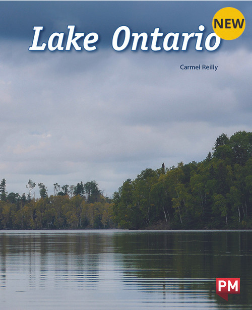 Pm Library Purple Lake Ontario 19 (K) 6-Pack