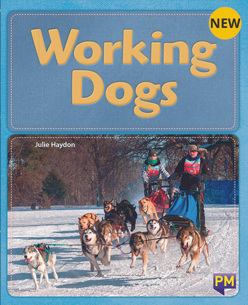 Pm Library Gold Working Dogs 22 (N) 6-Pack