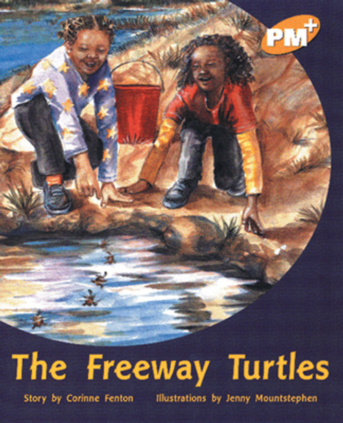 PM Plus Gold The Highway Turtles Lvl 22