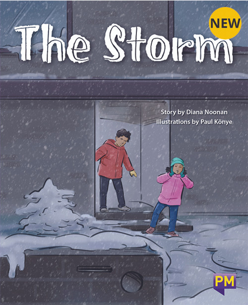 PM Library Purple The Storm 20 (K-L) (6-Pack)