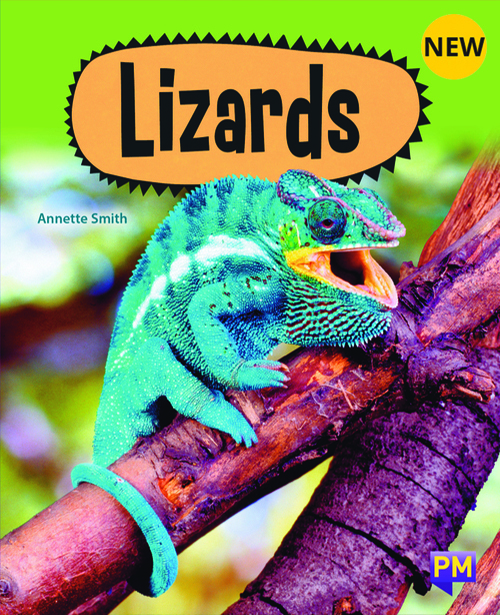 PM Library Purple Lizards 20 (K-L) (6-Pack)