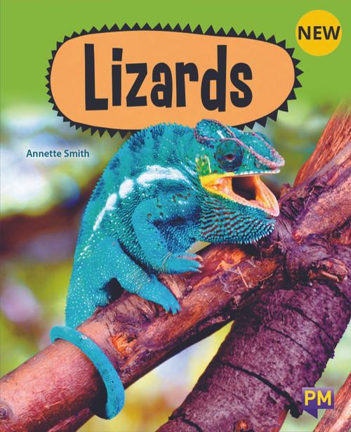 PM Library Purple Lizards 20 (K-L) (6-Pack)