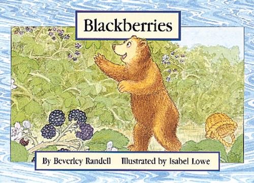 PM Library Yellow Blackberries Lvl 6