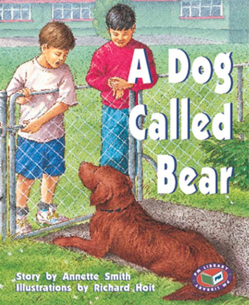 PM Library Purple A Dog Called Bear Lvl 19
