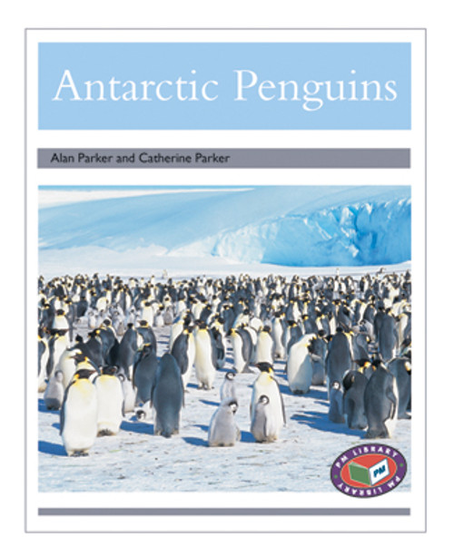 PM Library Silver Antarctica Penguins Lvl 24
