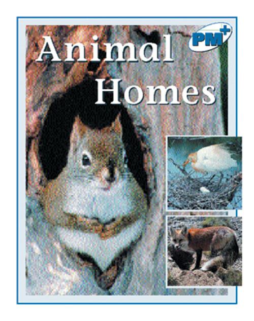 PM Plus Blue Animal Homes Lvl 11-12