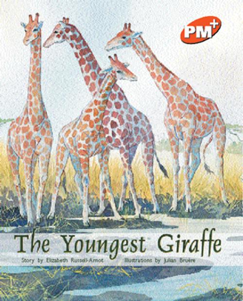 PM Plus Orange The Youngest Giraffe Lvl 16