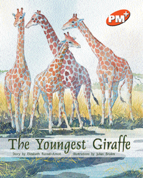 PM Plus Orange The Youngest Giraffe Lvl 16