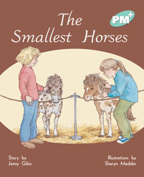 PM Plus Turquoise The Smallest Horses Lvl 17