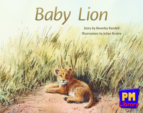 New PM Library Red Baby Lion Lvl 4